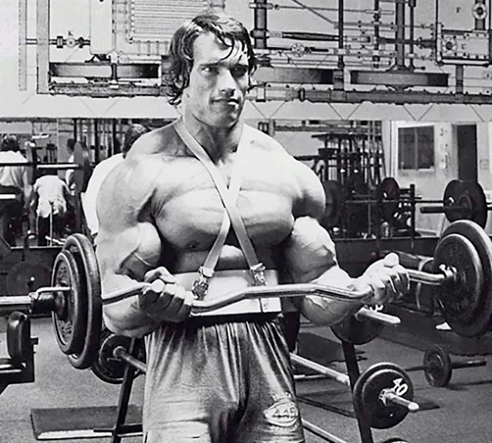 Arnold Schwarzenegger Age Height Weight Images Bio
