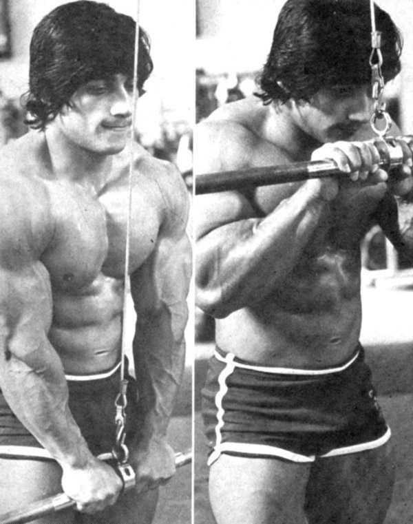 danny_padilla_84-bodybuilding-pics
