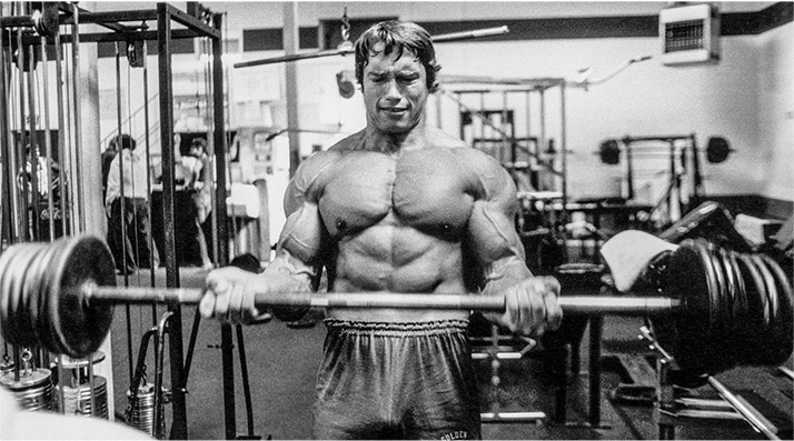 Arnold schwarzenegger age height weight images bio arnold blueprint mass training 3 graphics malvernweather Image collections