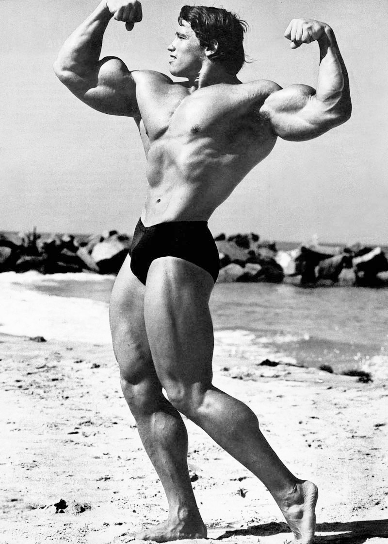 Arnold schwarzenegger age height weight images bio arnold schwarzenegger mobile iphone 6s malvernweather Choice Image