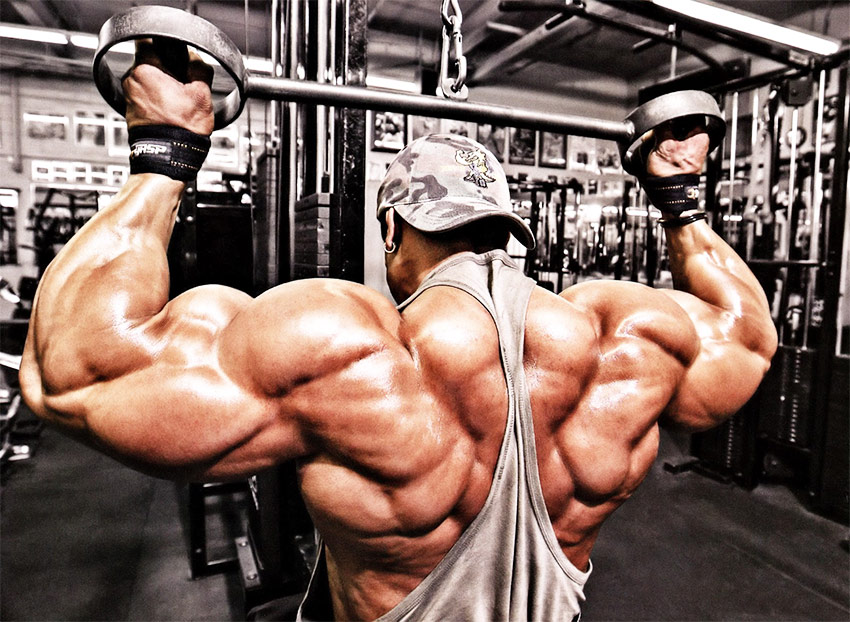 A picture of Roelly Winklaar training his back at the gym, which displays the extent of his muscular definition and size.