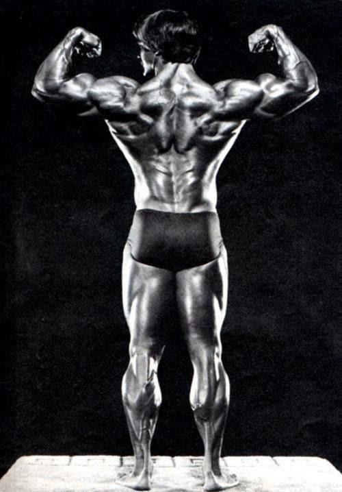 roger callard back muscles