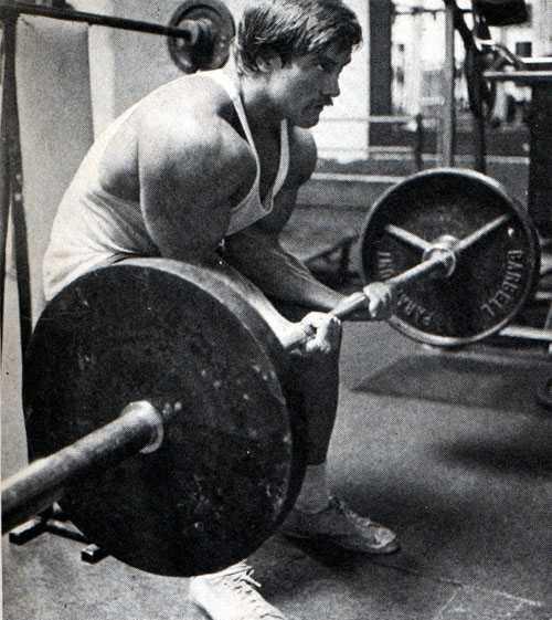 roger callard forearm workout
