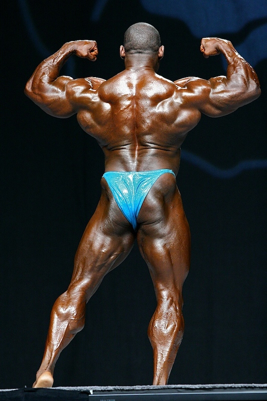 vince taylor at mr. olympia 2007 back double biceps