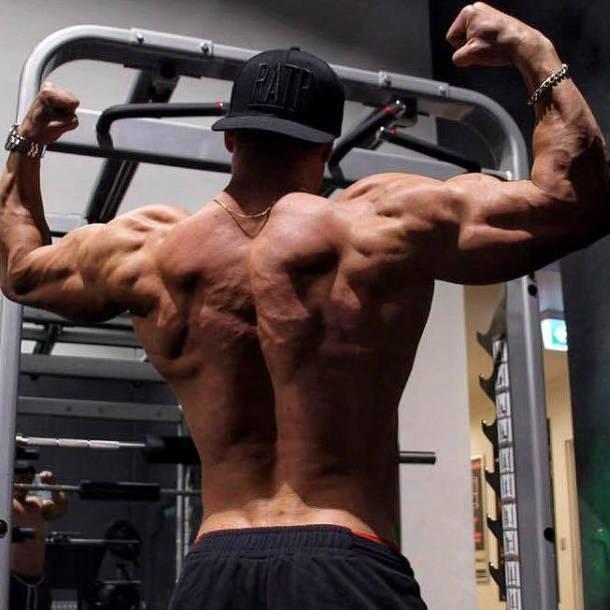 josef rakich's back