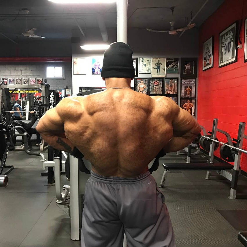 juan morel's back in the gym