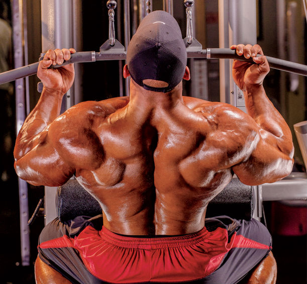 mahmoud elssbiay seated pulldown