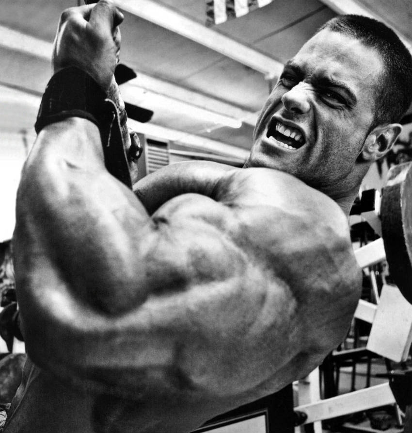 Evan Centopani completing a cable curl, showing his large arms and chest