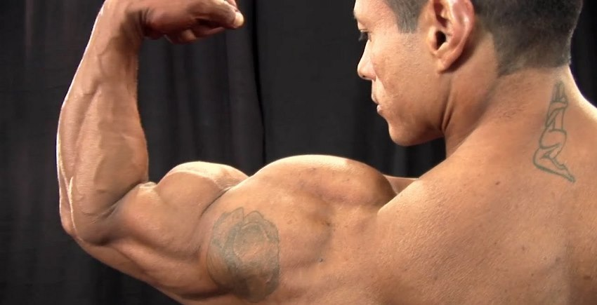 Back shot of Leonardo Pacheco flexing his big and ripped biceps