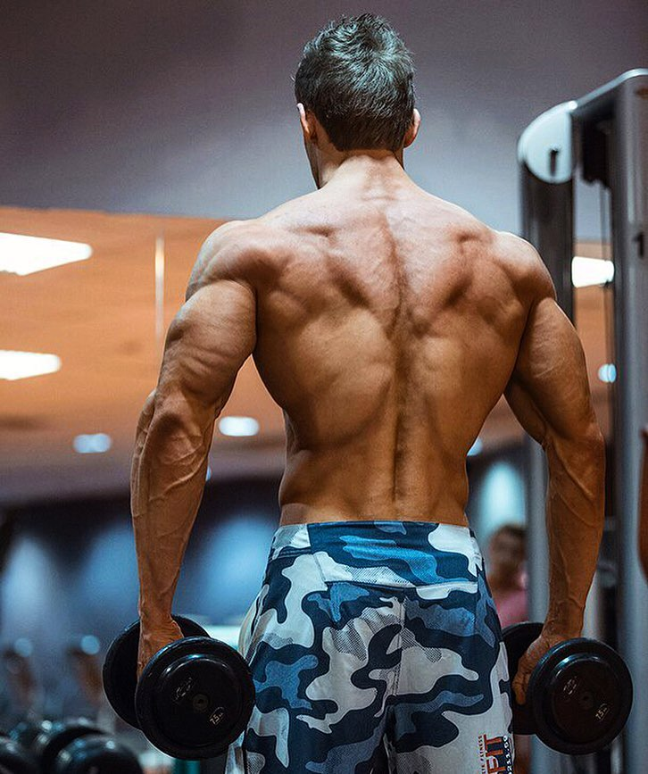 Nikolay Kuleshov training shirtless in the gym, his traps, lats, and arms from the back looking incredibly ripped and aesthetic