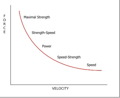 The force velocity (F-V) curve dictates how your body adapts to strength training