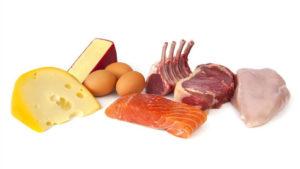 Protein for bodybuilding diet