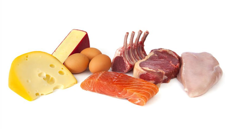 Protein for bodybuilding diet