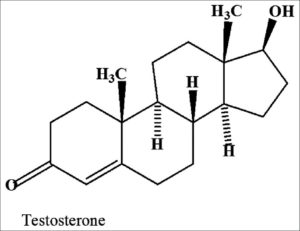 Testosterone Chemical Structure