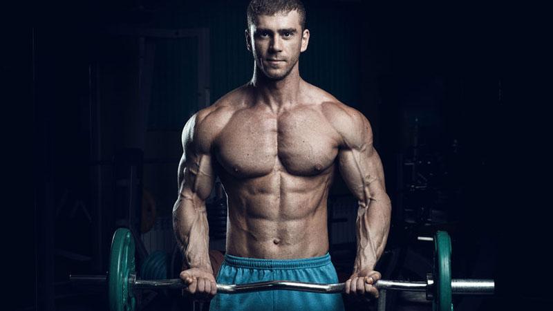 Bicep curl bodybuilder