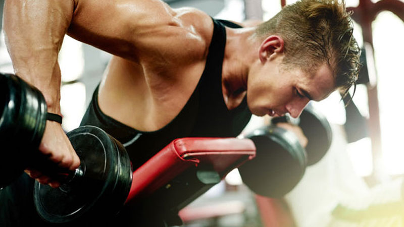 Muscle-building-supplements-creatine