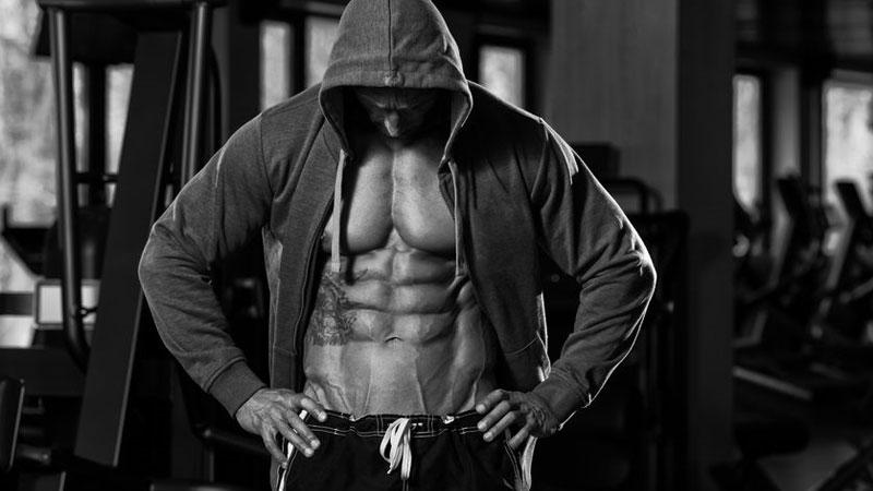 5 day muscle split program