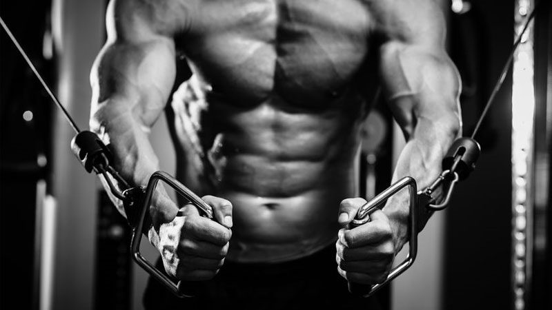 5-day-workout-plan-for-muscle-building