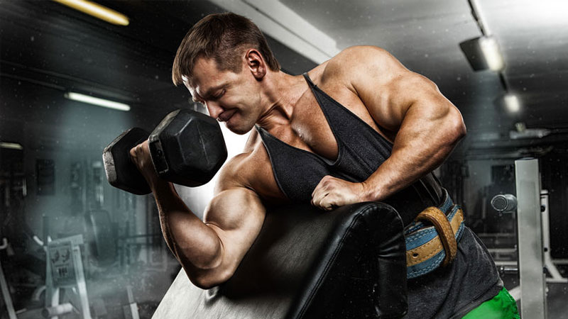 Top Rules of Clean Bulking