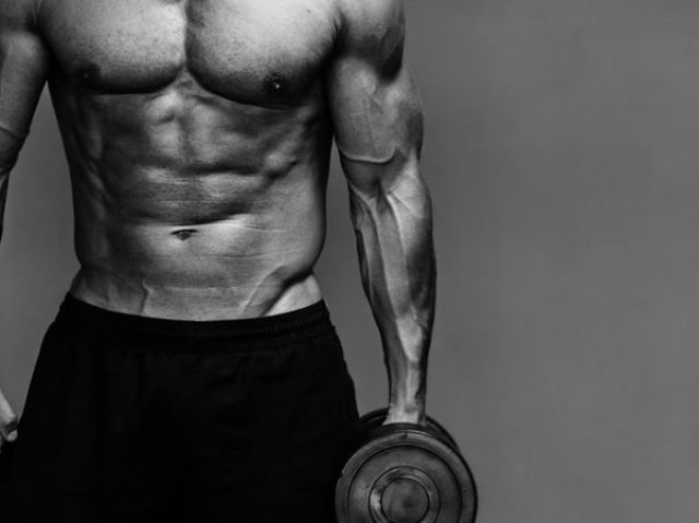 The Ultimate Diet Plan for Building Muscle