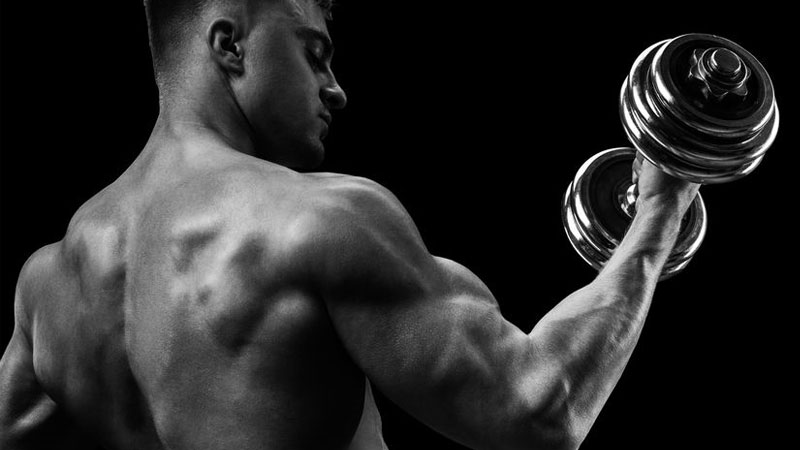 Greatest Physiques 5-Day Workout Routine for Beginners